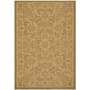 Short Light Natural Indoor/Outdoor Area Rug