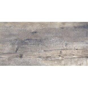 Explorer 12 x 24 Porcelain Tile in Gray
