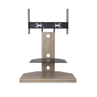 Floor Stand Adjustable Tilt Wall Mount for 30