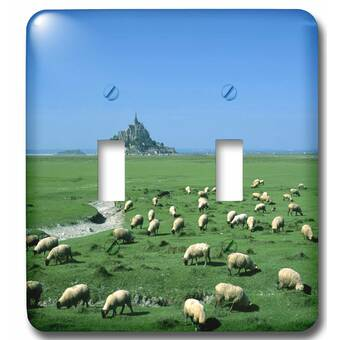 3drose Painting Of Farm Life In Iowa 2 Gang Toggle Light Switch Wall Plate Wayfair