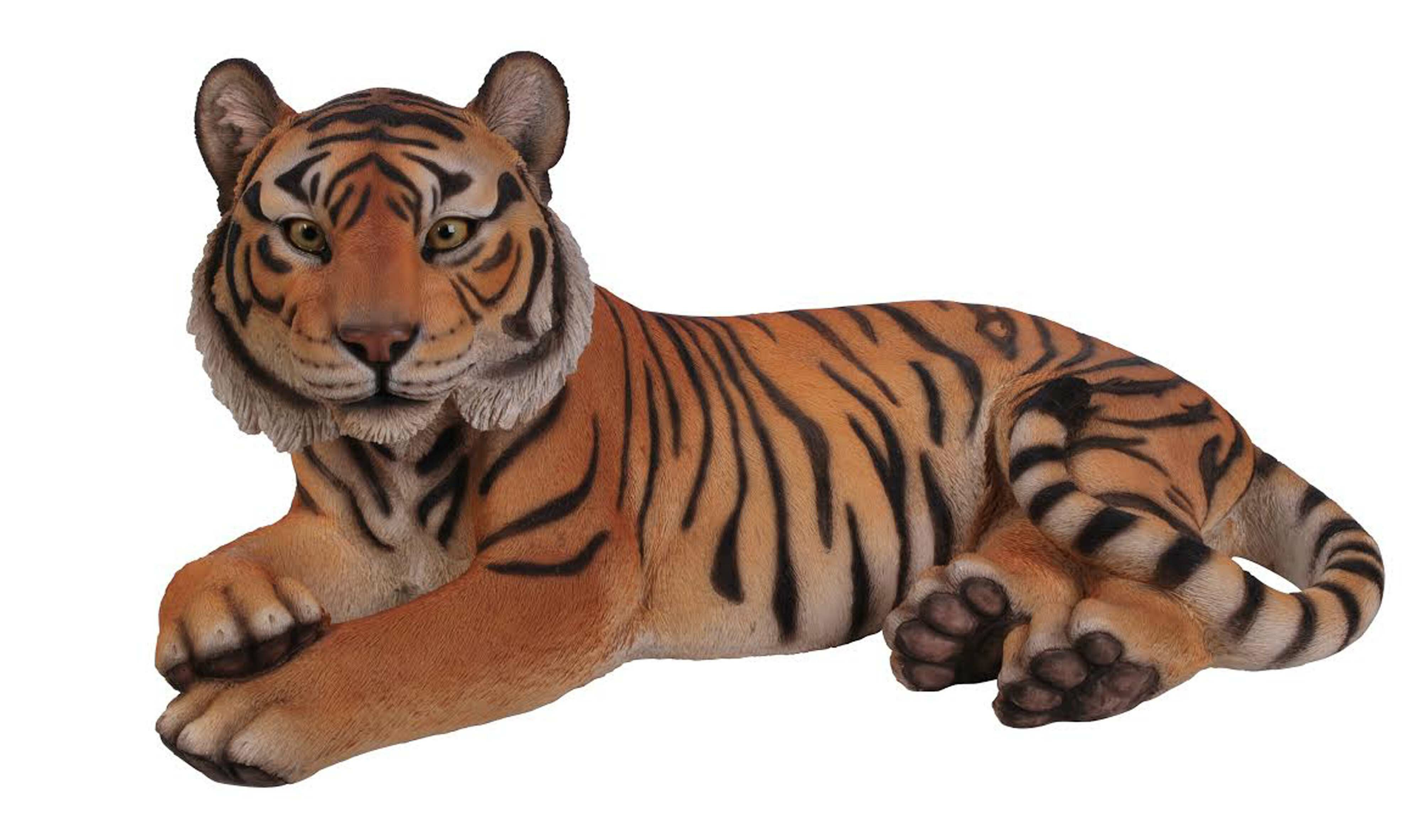 Tiger Safari Animal Big Cat Wall Clock Gift Boxed NEW