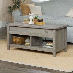 Tilden Lift Top Coffee Table Greyleigh