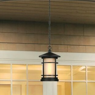 Westinghouse Lighting Albright 1-Light Outdoor Pendant