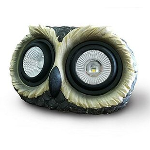 Myfuncorp Owl Solar Color Changing Spot Light