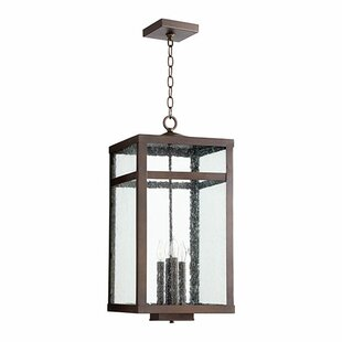Pedersen 4-Light Outdoor Pendant by Gracie Oaks