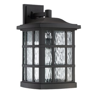 Brayden Studio Riverside Drive 1-Light Outdoor Wall Lantern