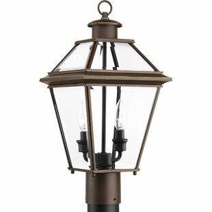 Gunnora 2-Light Lantern Head