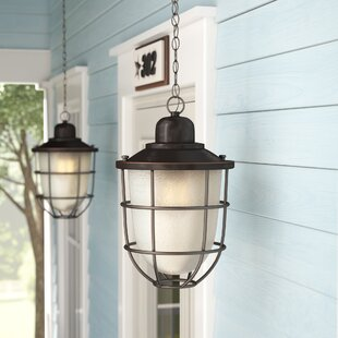 Beachcrest Home Glencourt 1-Light LED Outdoor Hanging Lantern