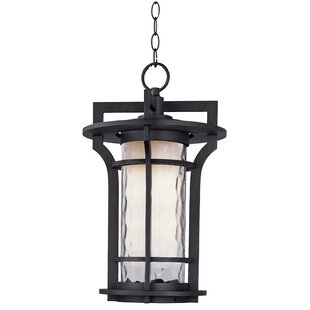 Where buy  Espitia 1-Light Outdoor Hanging Lantern By Millwood Pines