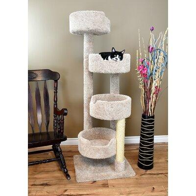 Cat Trees Amp Condos You Ll Love In 2019 Wayfair