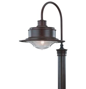 Theodore Industrial 1-Light 60W Lantern Head by Darby Home Co