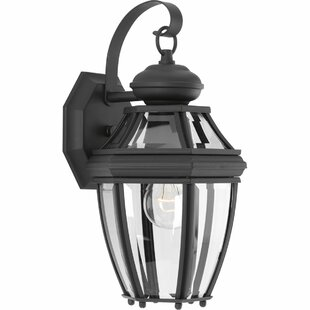 Reviews Dunmore 1-Light Outdoor Wall Lantern By Alcott Hill