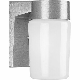 Mcneil 1-Light Outdoor Sconce by Latitude Run