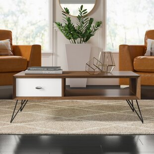Stender Coffee Table with Storage