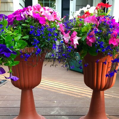 Plastic Urn Planter ALEKO Color: Terra Cotta