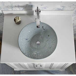 Kohler Hydrorail Ceramic Circular Vessel Bathroom Sink
