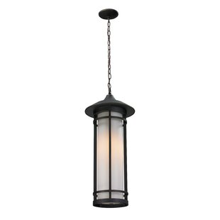Bloomsbury Market McKew 1-Light Outdoor Pendant