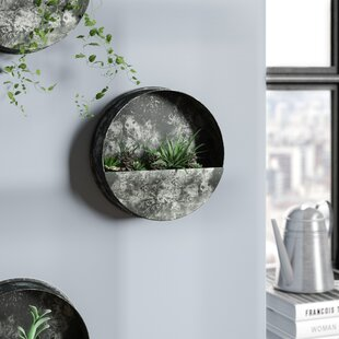 Round Wall Planters Vertical Gardens You Ll Love Wayfair