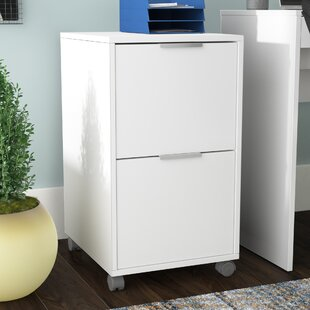 Castelli 2 Drawer Vertical Filing Cabinet by Ebern Designs