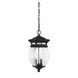 Alcott Hill Hultgren 2-Light Outdoor Hanging Lantern