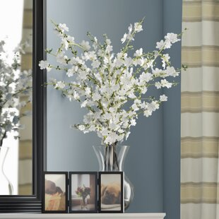 Cherry Blossoms Arrangement With Vase by Alcott Hill 2019 Online