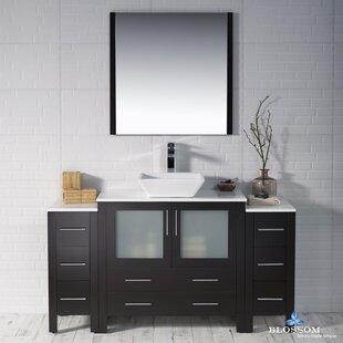 Mance 59 Single Bathroom Vanity Set with Mirror