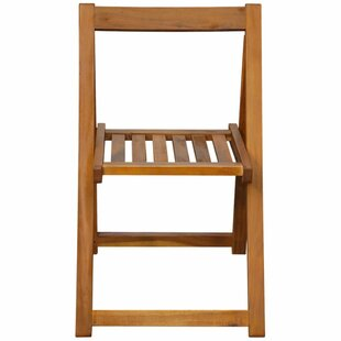 Berkowitz Folding Garden Chair (Set Of 2) By Sol 72 Outdoor