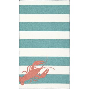One-of-a-Kind Alfred 26 x 45 Teal/ white/salmon Area Rug ByBreakwater Bay