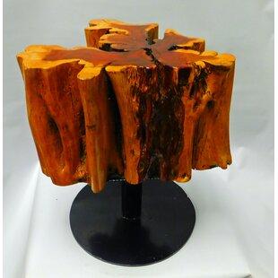 Best Reviews Pensford Tree Root End Table by Loon Peak