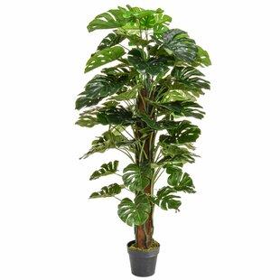 Artificial Monstera Tree By The Seasonal Aisle