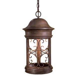 Great Outdoors by Minka Sage Ridge 1-Light Outdoor Hanging Lantern