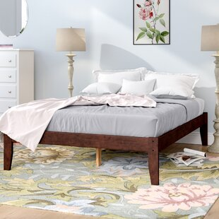 Deals Mackenzie Platform Bed by Andover Mills Reviews (2019) & Buyer's Guide