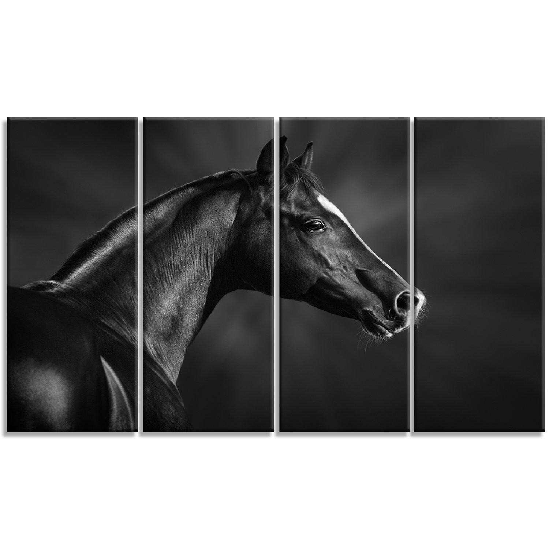 Designart Black Arabian Horse Portrait 4 Piece Photographic Print On Wrapped Canvas Set