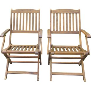 Harmond Folding Patio Dining Chair (Set of 2)