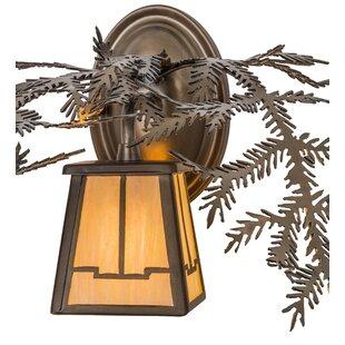 Buy luxury 1-Light Outdoor Wall Lantern By Meyda Tiffany