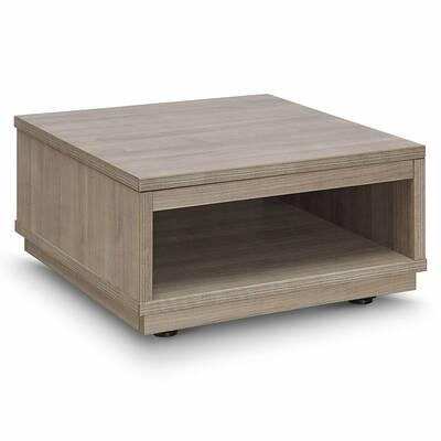 Dakota Fields Solid Wood Lift Top Coffee Table With Storage Wayfair