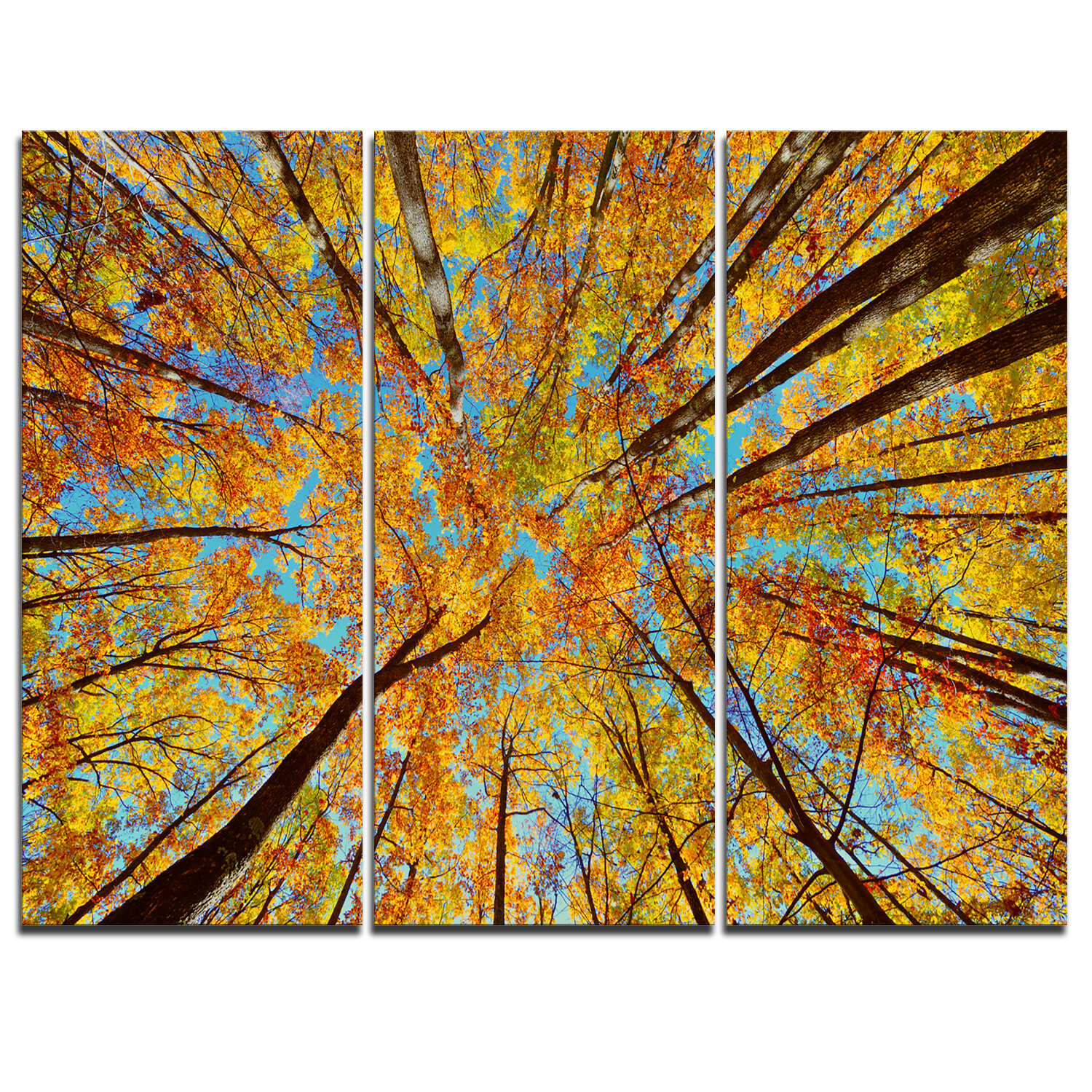Designart Tree Tops In Autumn Forest 3 Piece Graphic Art On Wrapped Canvas Set Wayfair