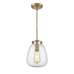 Wrought Studio Farris 1-Light Novelty Pendant