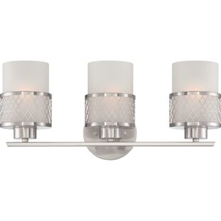 Darby Home Co Lofton 3-Light Vanity Light