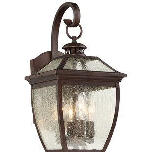 Bargain Auer 3-Light Outdoor Wall Lantern By Darby Home Co