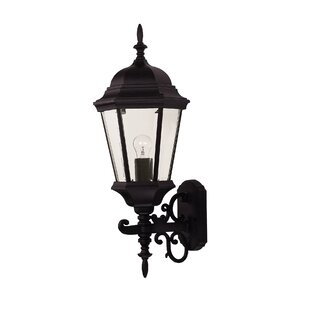 Betts 1-Light Outdoor Sconce
