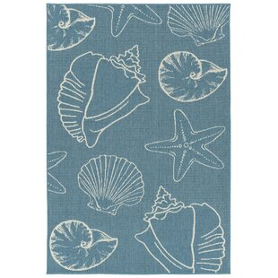 Augu Light Blue Indoor/Outdoor Area Rug