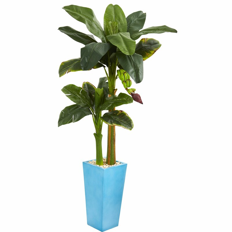 Latitude Run Artificial Banana Leaf Tree In Decorative Vase Wayfair