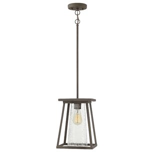 Coupon Propst 1-Light Outdoor Mini Pendant By Brayden Studio