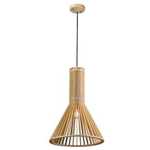Aloe Grove 1-Light Cone Pe..