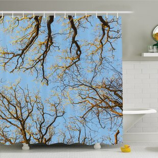 Forest Crown of Trees under Vibrant Sky Twig Birch Tranquil Air Radial Image Shower Curtain Set