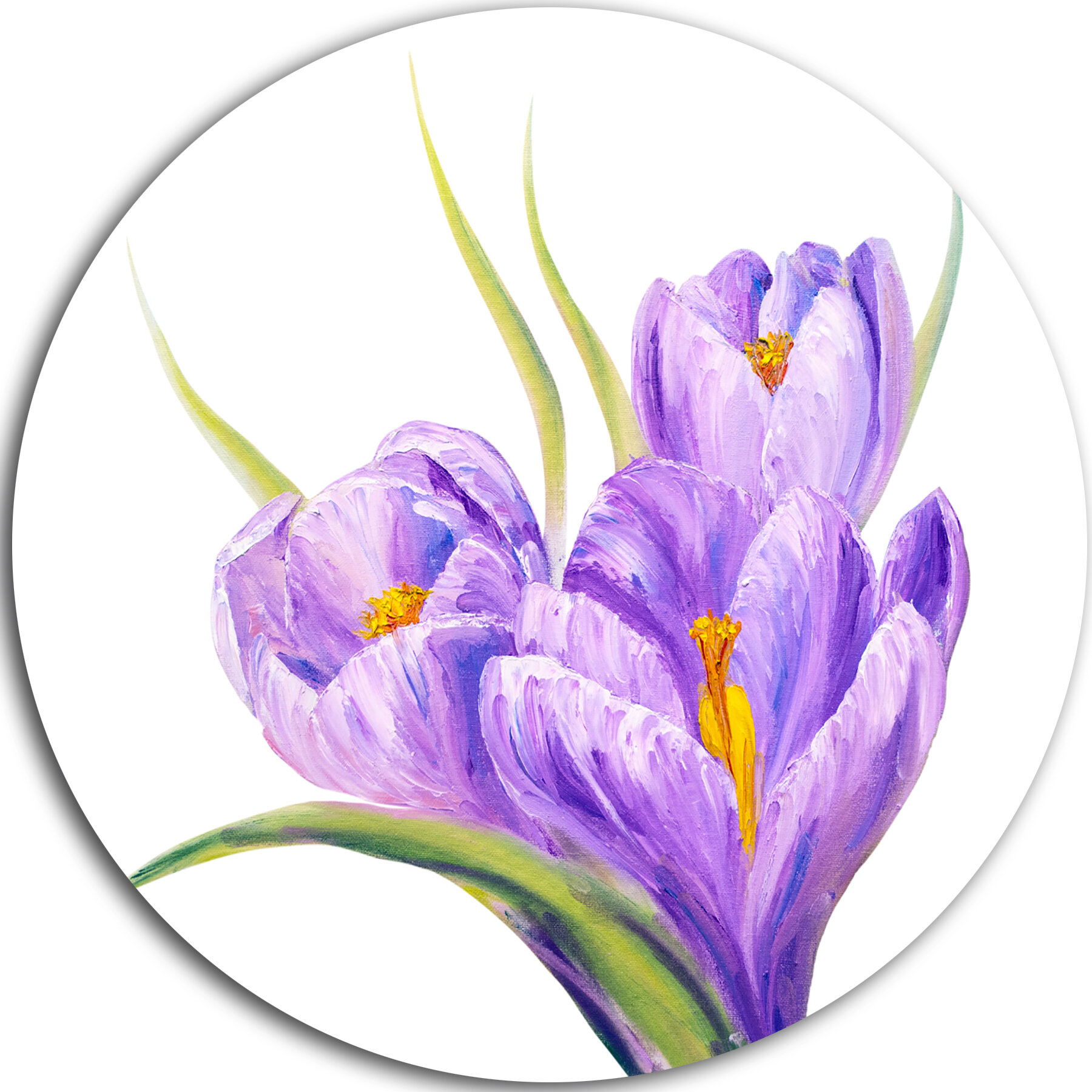 Designart Crocuses In White Background Painting Print On Metal Wayfair