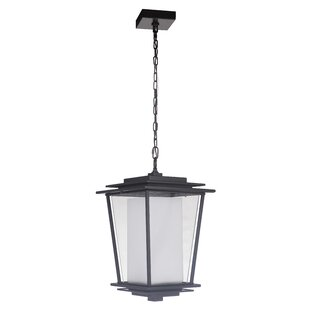 Pantela 2-Light Outdoor Pendant