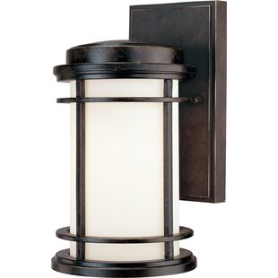 Teminot 1-Light Outdoor Wall Lantern By Bloomsbury Market Outdoor Lighting