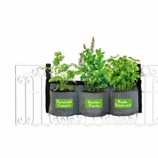 Sol 72 Outdoor Greenhouse Accessories